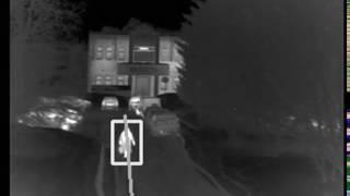 Opencv Detector crossing line (Видеоаналитика Детектор пересечения линии)