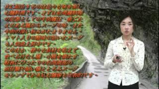 馬跡導遊口試模擬 【顧捷:台灣小吃】.wmv