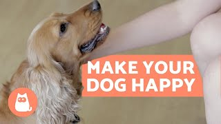 How to Make Your DOG HAPPIER - 10 Key Tips