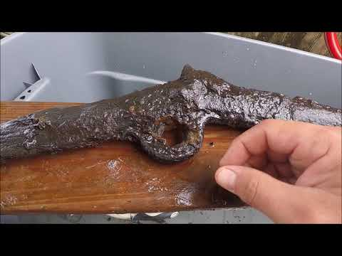 Waterlogged Civil War Burnside Carbine: Preservation Take Two &  Jumper Box Review