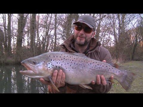 The Big Fish  FLY FISHING For HUGE Still Water Brown Trout  - Manningford Fishery