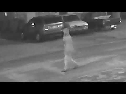 TAMPA POLICE SEEK PUBLIC'S HELP WITH HOMICIDE INVESTIGATION