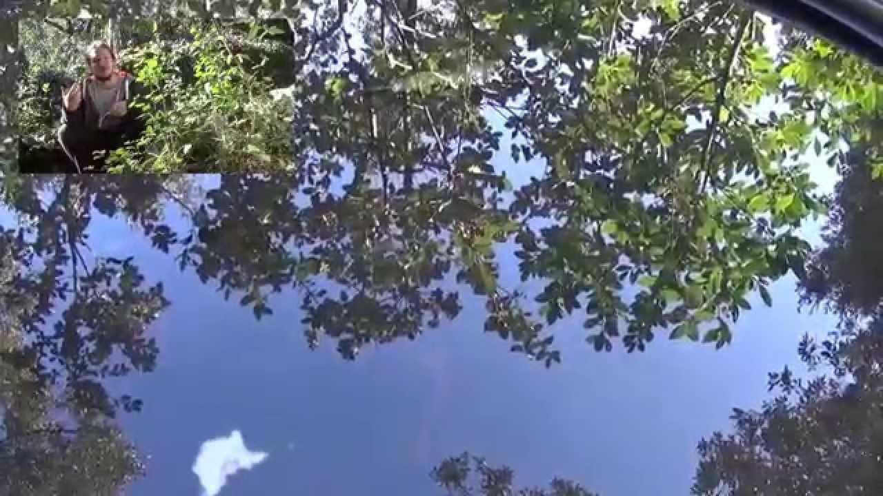 Jardiner avec la lune (évocation de la biodynamie) - YouTube
