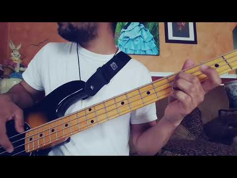 Celia Cruz- Pa\' La Paloma (Bass Cover) - YouTube