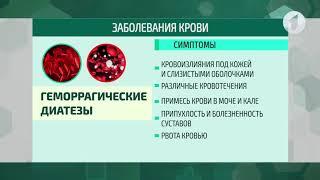 здравствуйте / Заболевания крови. Классификация