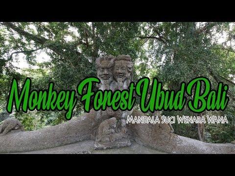 mandala-suci-wenara-wana-monkey-forest-ubud-bali---traveling-indonesia-with-beautiful-bali-forest