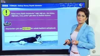 Sebep Sonuç Cümleleri  Neden Sonuç İlişkisi  Konu Anlatımı Türkçe