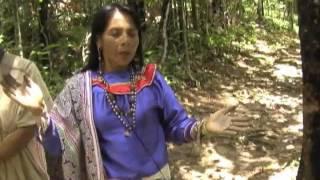 Amazon Experience, Shaman sings an Icaro for peace.