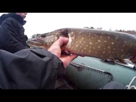 экстремальная рыбалка.щука.лодка BARK