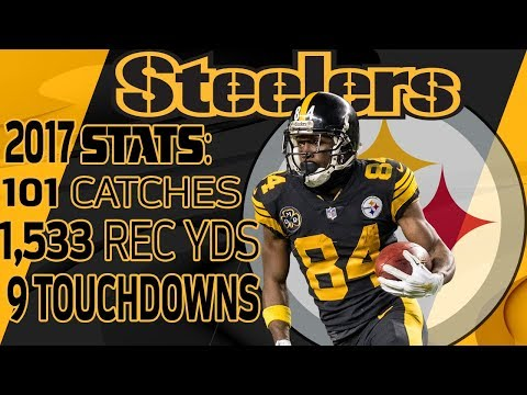 Antonio Brown's Best Highlights from the 2017 Season | NFL