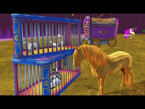 Crazy Circus ! Craziest Ever Star Stable Online Horse Video Game Let's Play