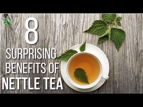 9 Health Benefits of Nettle Tea, How to