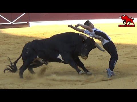 "Concurso De Cortes ""La Cuna Del Corte"". Medina Del Campo. 31 Agosto 2019"