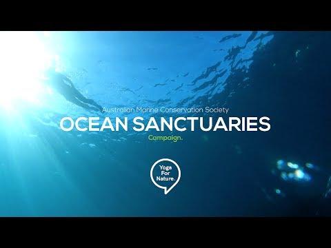 Sydney Marine Park - Marine Conservation