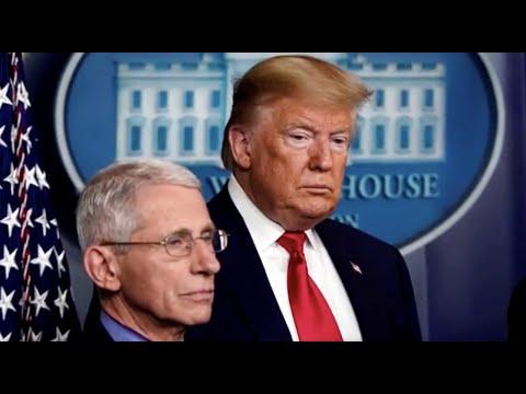 Trump calls Fauci a 'disaster'