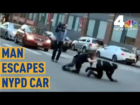 Insane Video Shows
