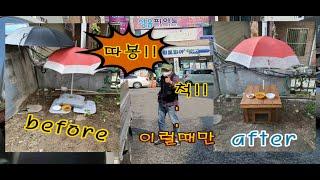 재능기부5 길냥이집 만들기3