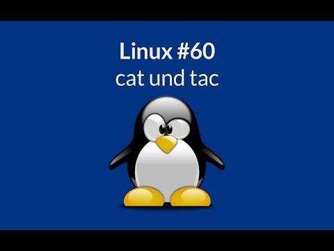 Linux - cat und tac - Dateien ausgeben