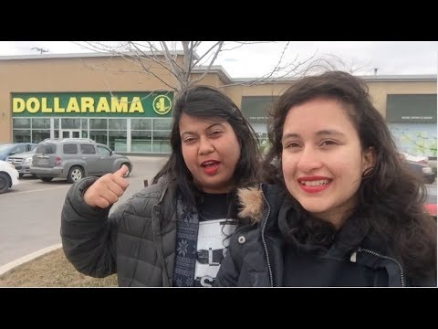 10 Things To Shop On Budget From DOLLARAMA | Indian Girl In Canada