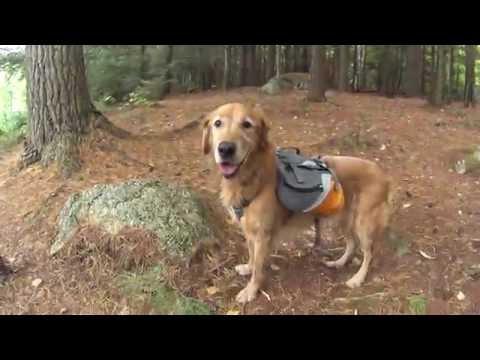 Pharaoh Lake Wilderness Part 2 - Backpacking Adirondack State Park