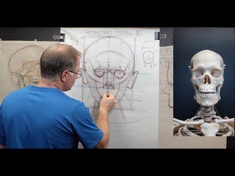 THE FIGURE: Head Structure #1 Know Your Proportions & Hit Your Landmarks