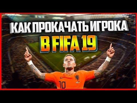КАК ЭФФЕКТИВНО ПРОКАЧАТЬ ИГРОКА В КАРЬЕРЕ FIFA 19