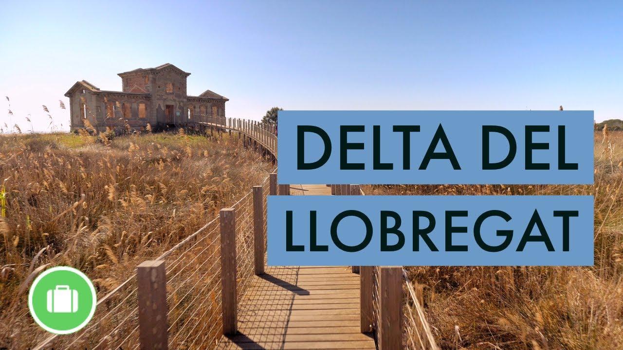 Download Delta del Llobregat (Catalunya)