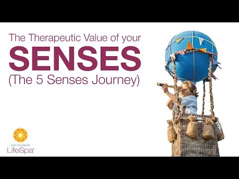 The Therapeutic Value of your Senses (The 5 Senses Journey)  | John Douillard's LifeSpa