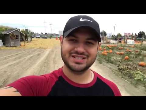 Vlogging in Seattle (pumpkin patch corn maze)