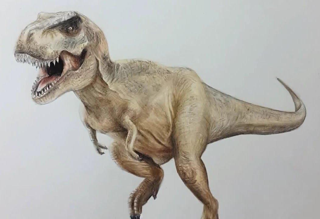 how i draw tyrannosaurus rex dibujando tiranosaurio rex