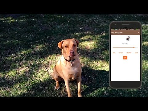 Dog Whistle - Free high pitched dog whistle app – Apps bei
