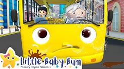 bums-bus.com