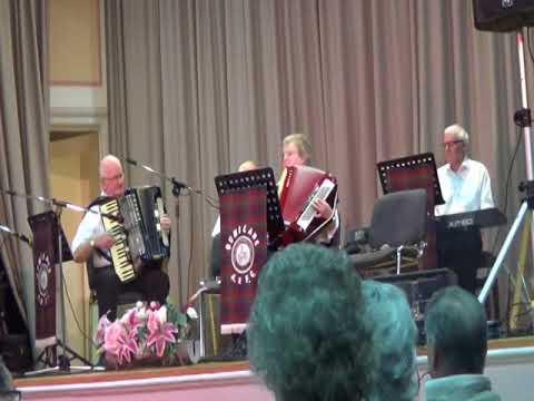 Janet Graham at Dunblane Accordion Club April 2017 -1