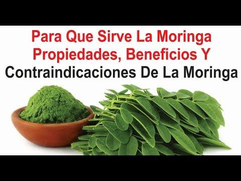 semilla de moringa beneficios y propiedades