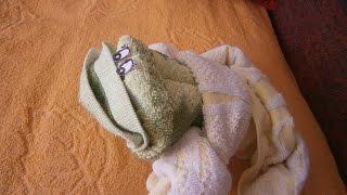 DIY. Frog Towel. Как сделать лягушку из полотенца