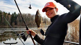 Ловля КАРАСЯ на болоте Рыбалка с удочкой НА ПОПЛАВОК ранней весной 236