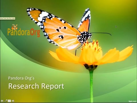 Pandora Research Report: Jarred Younger - Leptin in the Role of Neuroinflammation, Pain and Fatigue