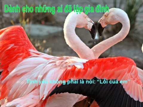 Thong Diep Tinh Yeu