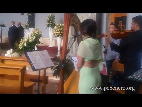 AVE MARIA di Schubert ARPA , VOCE & VIOLINO - PePeNeRo