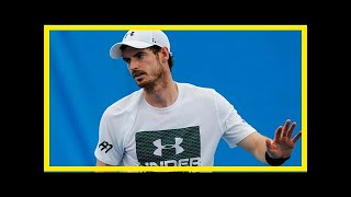 Andy murray pulls out of brisbane international