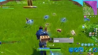 Why the Burst is better than the regular AR. Fortnite PS4