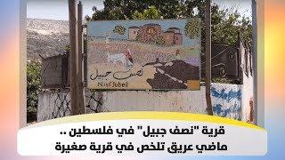 """قرية """"نصف جبيل"""" في فلسطين .. ماضي عريق تلخص في قرية صغيرة"""
