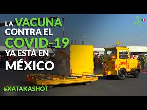 Vacuna contra COVID ya en México: plan de vacunación oficial y cuándo me tocará