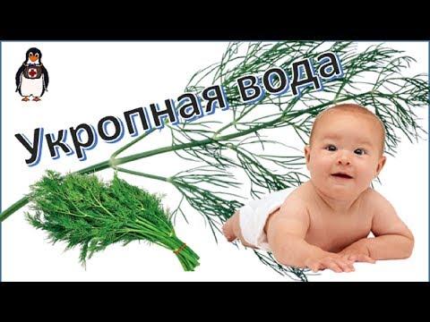 Как правильно заваривать укропную водичку для новорожденного