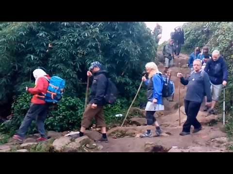 Velliyangiri hills | Shivan Temple | Foreigners in Velliyangiri | Velliyangiri Yatra | Youtube