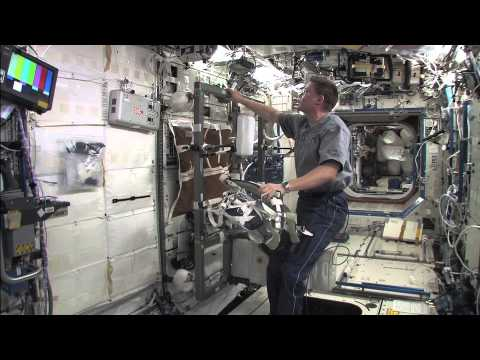 Cycling on the International Space Station With Astronaut ...