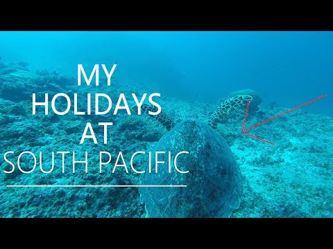 Tropical Holidays at South Pacific - Travel&Joy