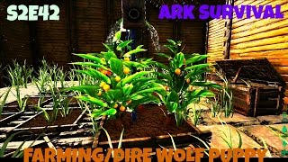 Ark: Survival Evolved - FULL FARMING GUIDE/DIRE WOLF BREEDING! (S2E42)