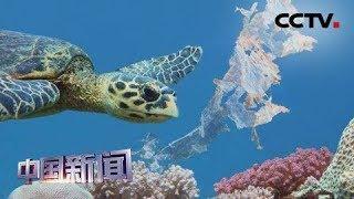 [中国新闻] 联合国报告:百万物种因人类影响濒临灭绝 | CCTV中文国际