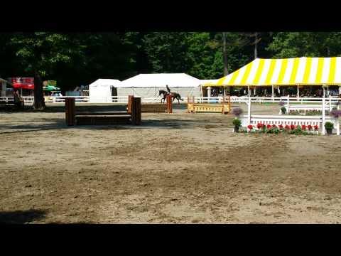 Baby Green - Saratoga Classic Horse Show 06/09/15